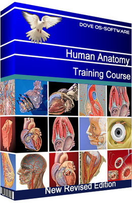 Product picture Human Anatomy Training Course Manual Guide