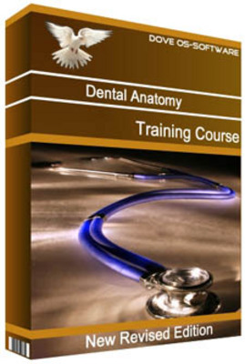 Product picture Dental Anatomy Physiology Dentistry Training Course Manual